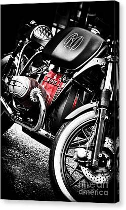 Rat Racer Canvas Print by Tim Gainey