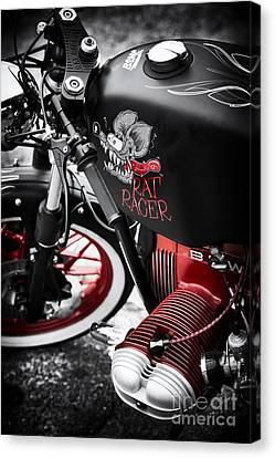 Bmw Rat Racer Canvas Print by Tim Gainey