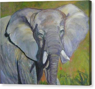 Bo Bo The Elephant Canvas Print