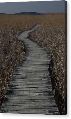 Boardwalk Canvas Print by Eric Workman