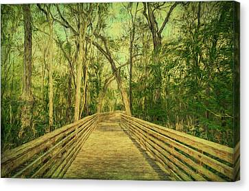 Canvas Print featuring the photograph Boardwalk by Lewis Mann