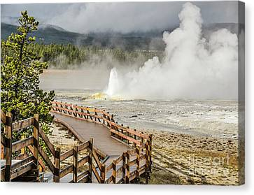 Canvas Print featuring the photograph Boardwalk Overlooking Spasm Geyser by Sue Smith