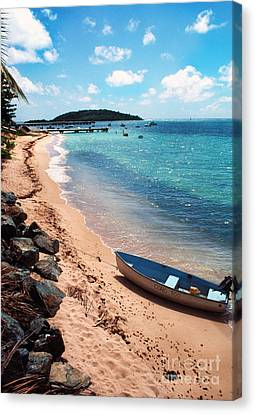 Boat Beach Vieques Canvas Print by Thomas R Fletcher