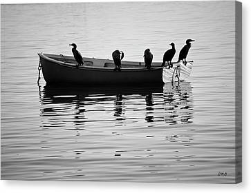 Boats And Cormorants Plymouth Harbor Bw Canvas Print