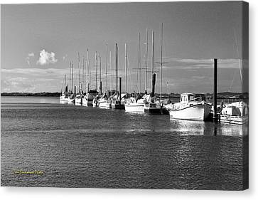 Boats On The Estuary Canvas Print