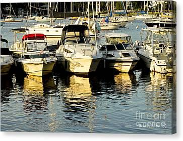 Boats Reflected Canvas Print by Carol F Austin