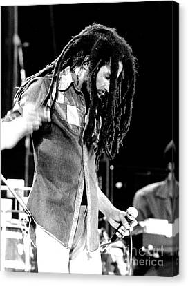 Bob Marley 1979 Dreads Canvas Print by Chris Walter