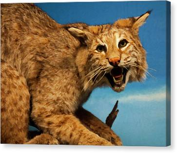 Canvas Print featuring the digital art Bobcat On A Branch by Chris Flees