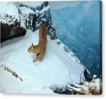 Canvas Print featuring the digital art Bobcat On A Mountain Ledge by Chris Flees