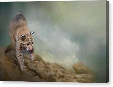 Bobcat Art Canvas Print - Bobcat On The Rocks by Jai Johnson