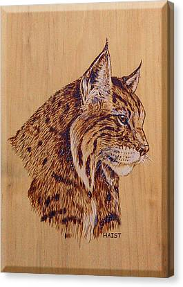 Canvas Print featuring the pyrography Bobcat by Ron Haist