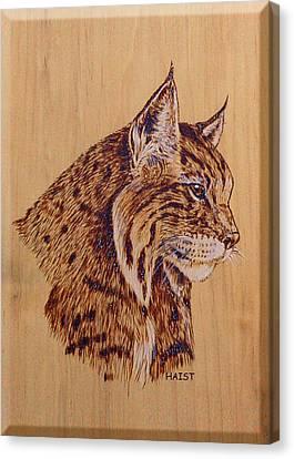 Bobcat Canvas Print by Ron Haist