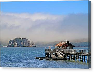 Canvas Print featuring the photograph Bodega Bay by Donna Kennedy