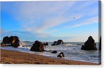Bodega Bay Sunset Canvas Print by Brad Scott
