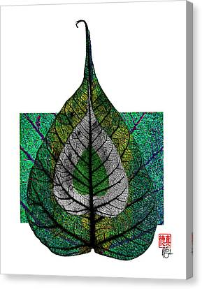 Bodhi Leaf Canvas Print by Peter Cutler