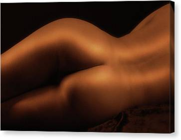 Body Parts 2 Canvas Print by Naman Imagery