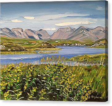 Bog Road Connemara Co Galway Canvas Print