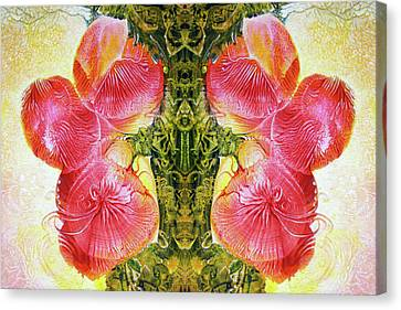 Bogomil Anniversary Flower - Digital Canvas Print