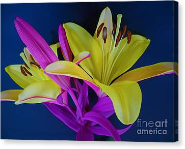 Canvas Print featuring the photograph Bold Beautiful Flowers by Ray Shrewsberry