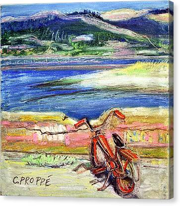 Bolinas Bike Canvas Print by Colleen Proppe
