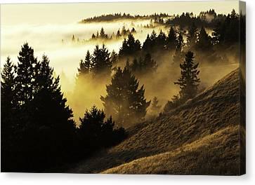 Bolinas Ridge Canvas Print by Lance Kuehne