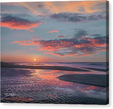 Bolivar Flats, Texas Canvas Print