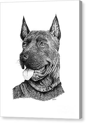 Bolo Black And White Drawing With Pen And Ink Of A Dog Canvas Print by Mario Perez