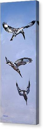 Bombs Away Canvas Print by Christopher Reid