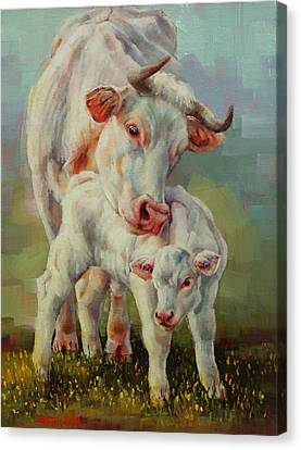 Bonded Cow And Calf Canvas Print by Margaret Stockdale