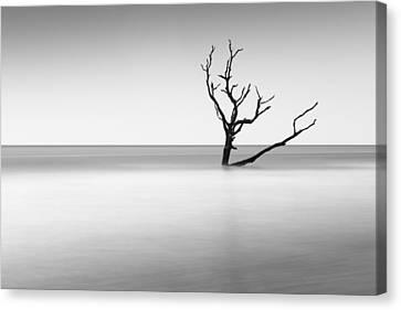 Boneyard Beach I Canvas Print by Ivo Kerssemakers