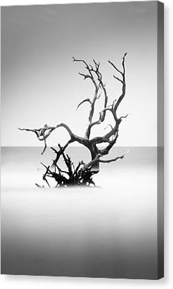 Boneyard Beach X Canvas Print by Ivo Kerssemakers