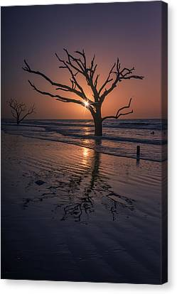 Boneyard Glow - Botany Bay Canvas Print