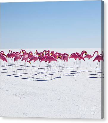Bonneville Salt Flats Usa Canvas Print