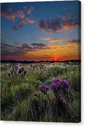 Bonnie's Meadow Canvas Print by Phil Koch