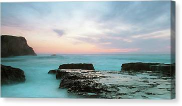 Canvas Print featuring the photograph Bonny Doon by Catherine Lau