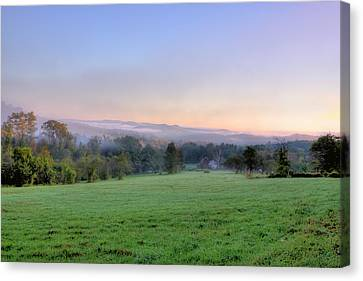Bonnyvale Field Canvas Print by Tom Singleton