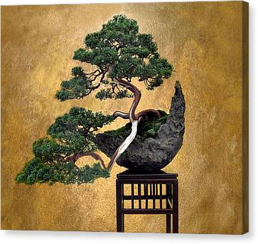 Bonsai 3 Canvas Print