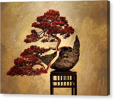 Bonsai  Canvas Print by Jessica Jenney