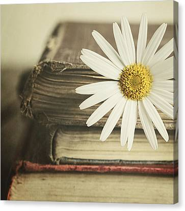 Canvas Print - Bookmarked by Amy Weiss