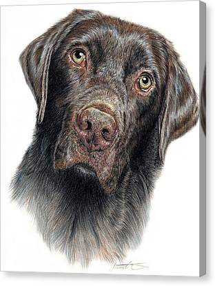 Prairie Dog Canvas Print - Boomer by Joanne Stevens