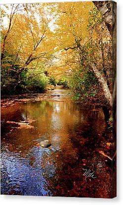 Canvas Print featuring the photograph Boone Fork Stream by Meta Gatschenberger