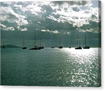 Boqueron Bay Canvas Print by Felix Zapata