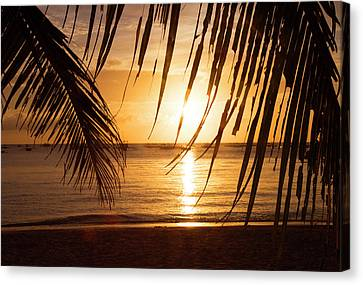 Boracay Philippians 5 Canvas Print by Mark Ashkenazi