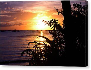 Boracay,philippians  2 Canvas Print by Mark Ashkenazi
