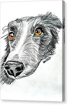 Border Collie Dog Colored Pencil Canvas Print