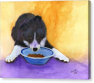 Border Collie Puppy Canvas Print