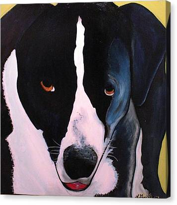 Canvas Print featuring the painting Border Collie- Sasha by Laura  Grisham