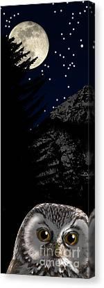 Canvas Print featuring the painting Boreal Owl Or Tengmalm's Owl - Aegolius Funereus - Nationalpark Gesaeuse Xeis by Urft Valley Art