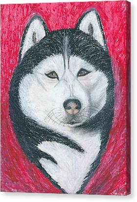 Boris The Siberian Husky Canvas Print