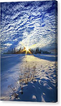 Canvas Print featuring the photograph Born As We Are by Phil Koch